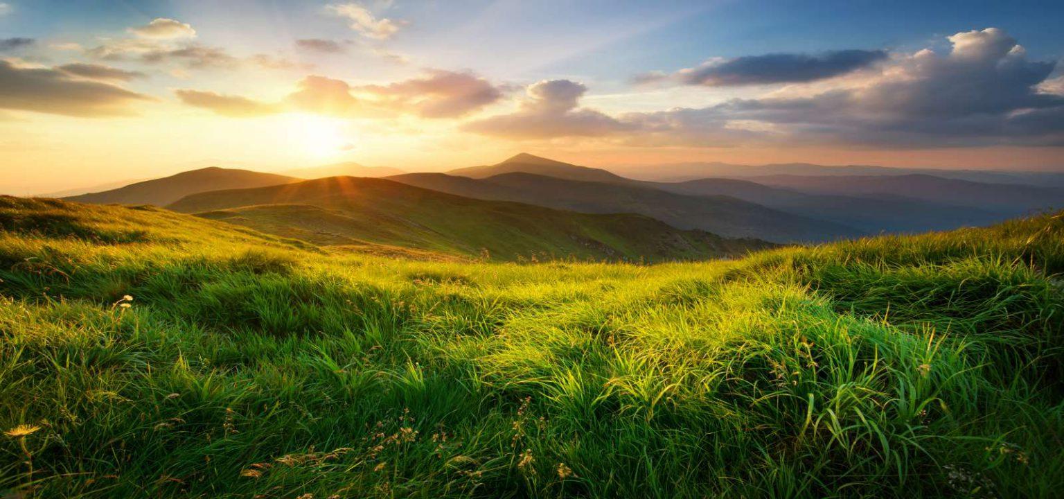 поддршка на зачувување и унапредување на екосистемите